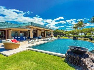 Sunny Kohala Coast vacation Villa with Internet Access - Kohala Coast vacation rentals