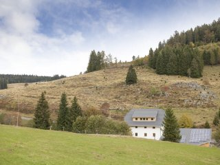 'ALTES GMEINDHUS'  Muggenbrunn-Todtnau -  BLACKFOREST-ECO friendly holiday - Muggenbrunn vacation rentals
