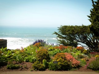 Stylish Wrights Beach Cottage – Views of Ocean, Gardens and Rolling Hills! - Bodega Bay vacation rentals