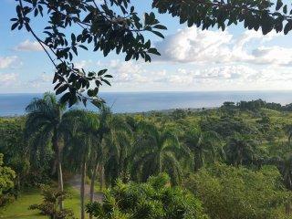 Golden Dolphin Estate Winery ~ Official TripAdvisor Listing - Cabrera vacation rentals