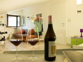 Libellule (private room between Langhe and Roero) - Bra vacation rentals