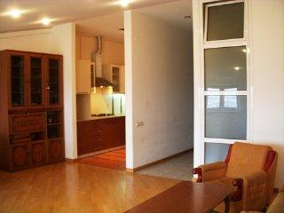 3 Bedroom apartment on Chaikovsky street - Yerevan vacation rentals
