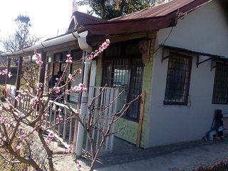 Himalyan bloom home in lap of himalya - Mukteshwar vacation rentals