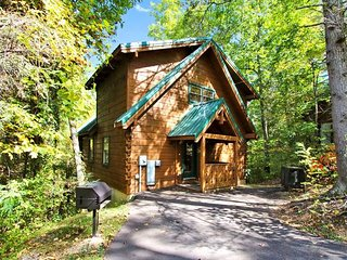 Cupid's Dart - Gatlinburg vacation rentals