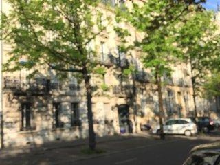 Le jardin Darcy hyper centre Darcy Gare-ville - Talant vacation rentals