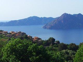 Maison en Corse avec jardin dans village classé (PIANA) - Piana vacation rentals