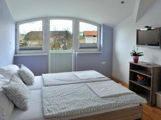 Cozy 1 bedroom Private room in Smarje Pri Jelsah with Television - Smarje Pri Jelsah vacation rentals