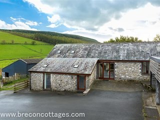 Lovely Cottage with Washing Machine and Television - Llanwrthwl vacation rentals