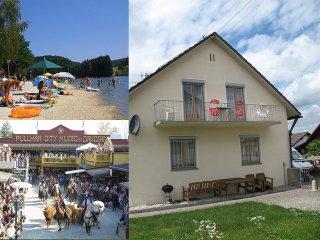 Eging am See ist ein kleiner idyllischer Ort am Rande des bayerischen Waldes. - Eging am See vacation rentals