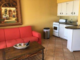 Corpus Christi Beach Condo 1334 - Corpus Christi vacation rentals