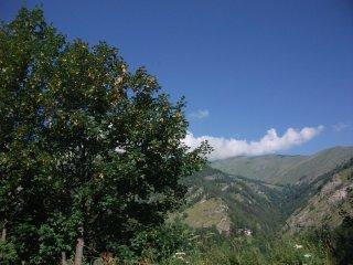Vacanze all'insegna del relax e della natura in media-alta Val Maira - Macra vacation rentals