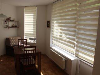 Cozy 1 bedroom Condo in Ilidza - Ilidza vacation rentals