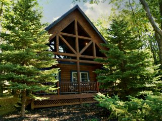 The Evergreen-3rd Night FREE! - Oakland vacation rentals