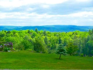 Pet and family friendly home on a private hilltop. - Putney vacation rentals