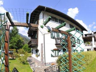 Villa Marchesoni, Secondo Piano - Transacqua vacation rentals