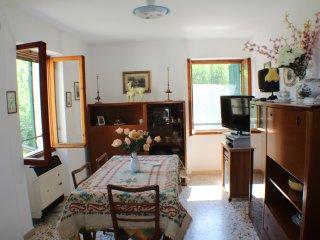 Casa in tipico caruggio Ligure - Vessalico vacation rentals