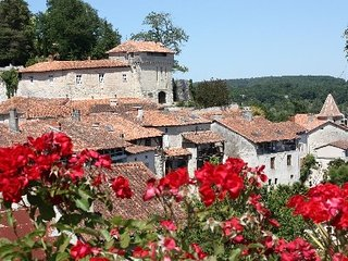 1 bed cottage in historic village of Aubeterre - Aubeterre-sur-Dronne vacation rentals