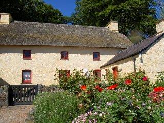 Charming 4 bedroom House in Cribyn - Cribyn vacation rentals