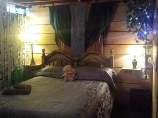 Rustic Birches Bdrm OR Green&Gold Bdrm in the Country 20 min south of Green Bay! - De Pere vacation rentals