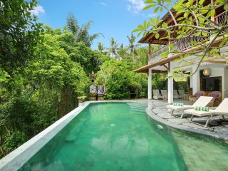 Huge Villa with river view in Ubud - Lodtunduh vacation rentals