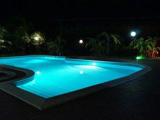 Villa bifamiliare con piscina munita di idromassaggio e doccia solare,barbecue.. - Roccella Ionica vacation rentals