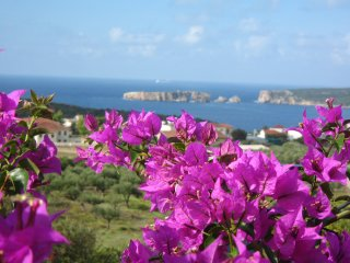 4 bedroom House with Internet Access in Pylos - Pylos vacation rentals