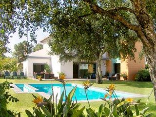 Villa Azeitão - Azeitao vacation rentals