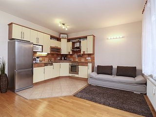 Comfortable Condo with Washing Machine and Television - Plzen vacation rentals