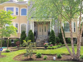 Beautiful House with Hot Tub and Television - Annandale vacation rentals