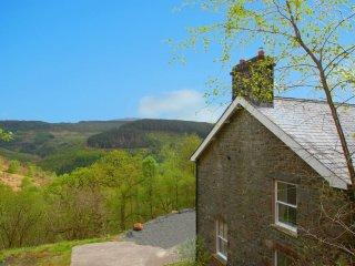 "Ty Mawr - ""Set in stunning scenery in Coed y Brenin forest!"" - Dolgellau vacation rentals"