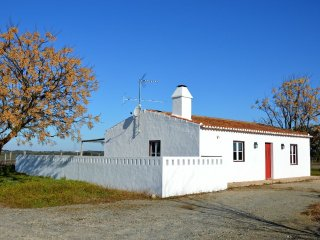 Gardian's House Surrounded by Vineyards and Oak and Olive Trees - Alter do Chão vacation rentals