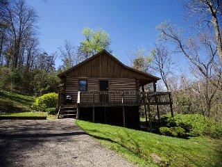 Perfect 2 bedroom Cabin in Logan - Logan vacation rentals
