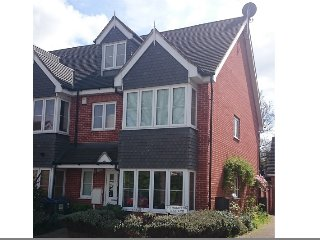 4 bedroom 3 bathroom modern family home with garden in Surbiton Greater London - Surbiton vacation rentals
