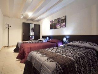 Ciutat Vella Gothic Superior - Barcelona vacation rentals