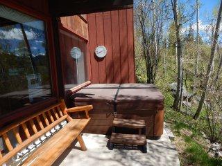 Snowshoe House - Winter Park vacation rentals