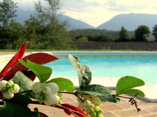 Castellonesto - Appartamenti con piscina(da 2 a 5posti) - Cagli vacation rentals