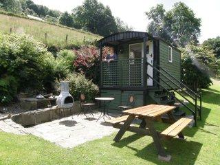 Hafan y Bugail (Shepherd's Haven) - Llanddewi Brefi vacation rentals
