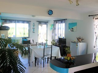 Apartement in the south close to most visited site - Chemin Grenier vacation rentals
