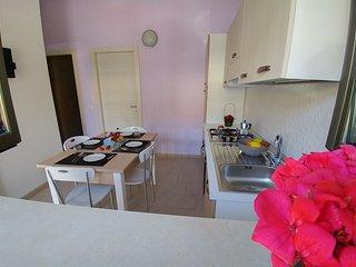 Nuovissimi appartamenti a 50 metri dal mare - Zambrone vacation rentals