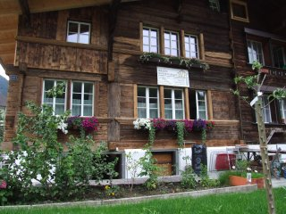 Beautiful 2 bedroom Wilderswil Apartment with Internet Access - Wilderswil vacation rentals