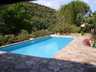 Grande maison avec piscine, au calme en bord de rivière, mais proche du village. - Roquebrun vacation rentals