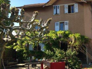 Charmant appartement dans la campagne près de Genéve - Saint-Julien-en-Genevois vacation rentals