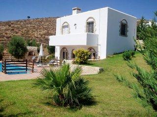 Bright 2 bedroom House in Kalamaki with Internet Access - Kalamaki vacation rentals