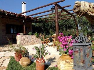 Boutique villa Petra I #16237.1 - Alikampos vacation rentals