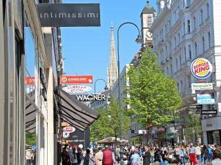 Bright 2 bedroom Vacation Rental in Vienna City Center - Vienna City Center vacation rentals
