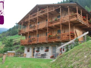 Chalet in Rabbi sleeps 4 ID 243 - Rabbi vacation rentals
