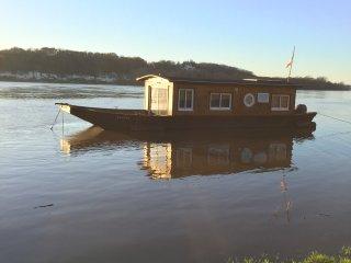 venez profiter d'un moment de détente en bateau sur la Loire - Saint-Martin-de-la-Place vacation rentals
