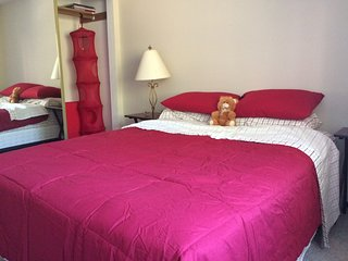 One room for rent in a 2 bedroom apartment - Kent vacation rentals