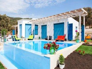 Nice Villa with A/C and Wireless Internet - Vasiliki vacation rentals
