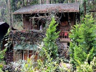 Nice 1 bedroom House in Munnar - Munnar vacation rentals